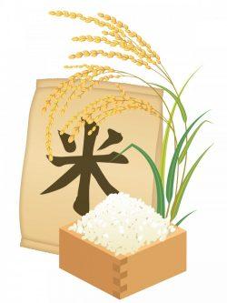 俳優・野村将希さんが郡山で稲刈りしたお米プレゼント♪